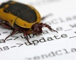 wp captcha free pingback bug